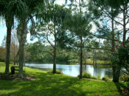 Westchase Homes For Sale