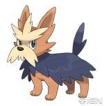 Pokemon Her R Evolution