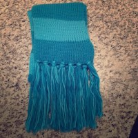29% off jcpenney Accessories - BNWT Blue Scarf from Carmen ...