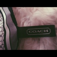 42% off Coach Accessories - Coach purse scarf from ...