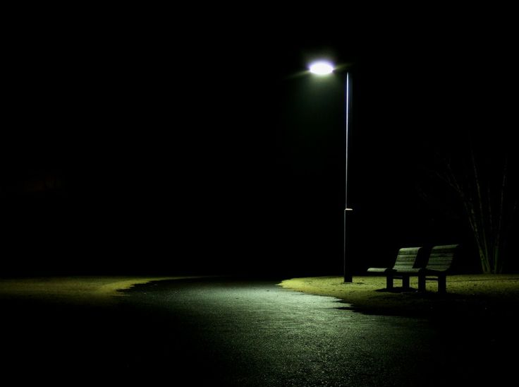 Night Is Short Walk On Girl Wallpaper The Bench Beneath The Streetlight Dtu Times