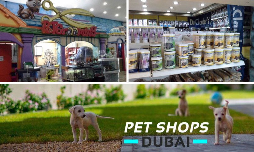 Pet Shops in Dubai