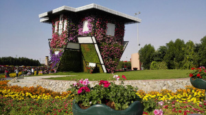 Dubai Miracle Garden Location Map Timings Entry Fee