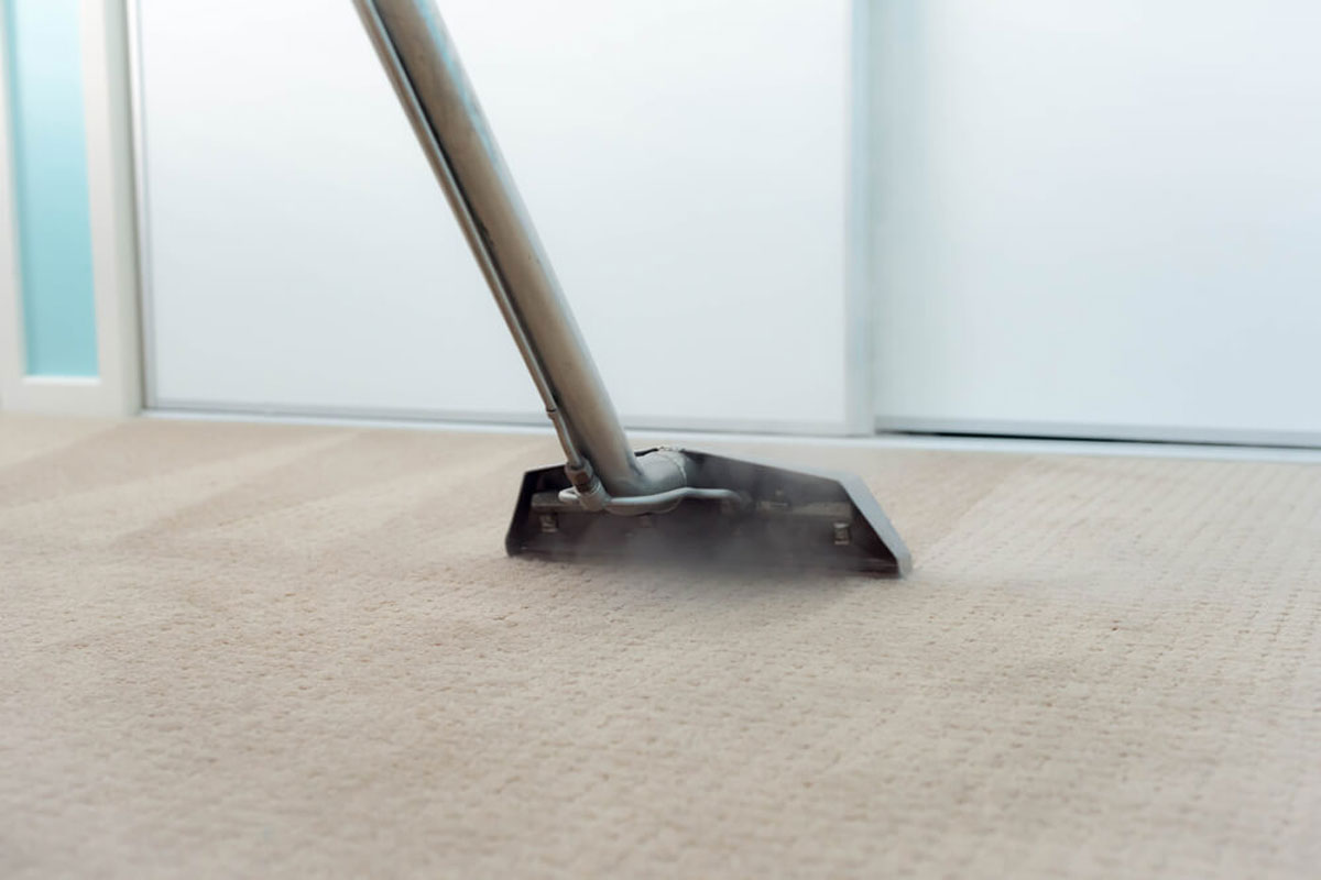 Domestic Carpet Cleaning Dublin Eco Carpet Cleaning Services