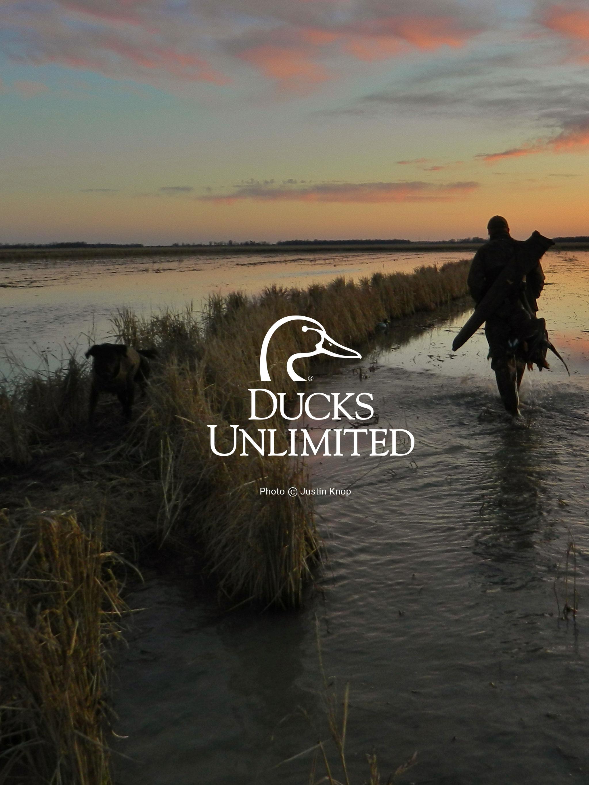 North Carolina Wallpaper Iphone Ducks Unlimited Mobile Wallpaper