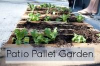 Roof Pallet Garden | ducttapeguitar