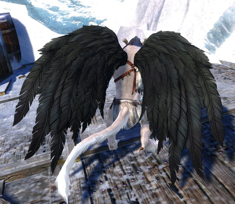 Skyrim Animated Wallpaper Gw2 Gemstore Update Black Feathered Wings And Martial
