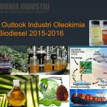 Data Outlook Industri Oleokimia dan Biodiesel 2015-2016