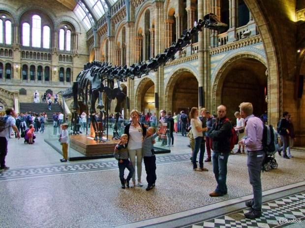 londyn-diplodok-muzeum-historii-naturalnej