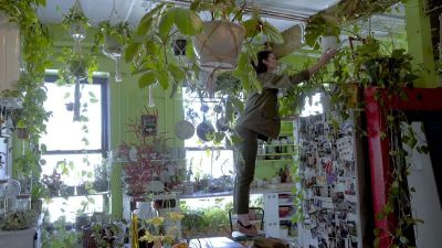 Watch Annals of Obsession | How Millennials Use Houseplants to Connect with Nature | The New ...