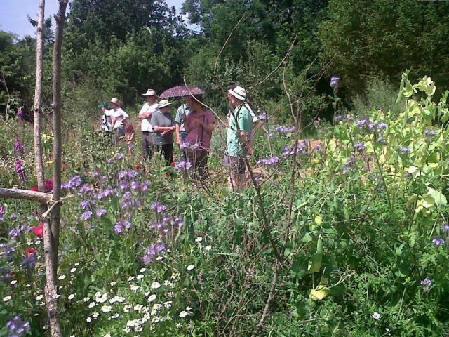 The Dyfed Smallholders in the annual vegatable garden.