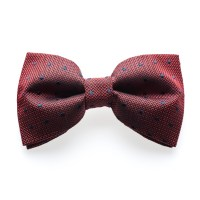 Egerton Claret - Red/blue dotted bow tie