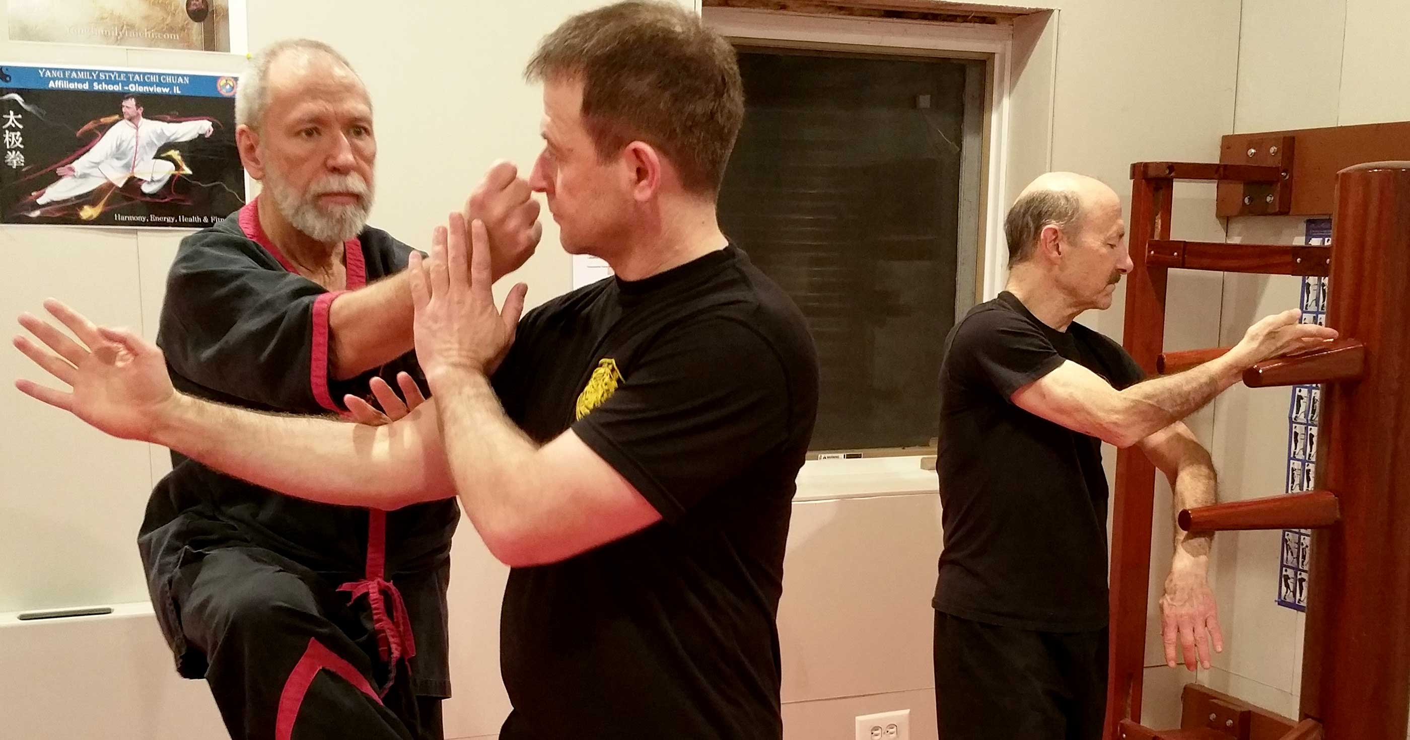 Master 2016 Chicago Wingtsun Seminar With Master Mike Adams April 16 17 2016