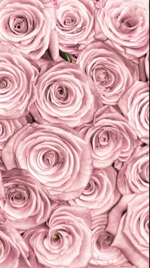Hd 3d Wallpapers For Iphone 6 1080p Wallpaper Rose Gold 12 Dzbc Org