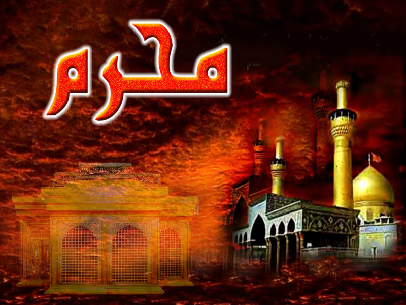 Imam Hussain 3d Wallpapers Roza E Imam Hussain Hd Wallpapers 12 Page