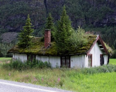 sustainable-design-green-roof-norway+1