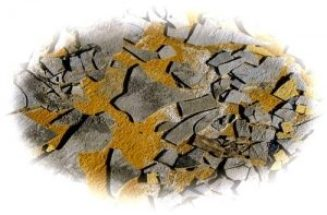 wall-fragments-300x197