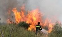 Πολύωρη κατάσβεση σε φωτιά που ξέσπασε στη Ζαγορά