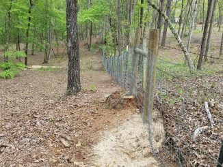 Spirit Horse fencing project