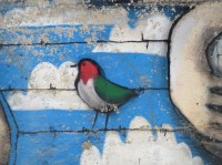 The writing on the wall: graffiti and wall art in ...