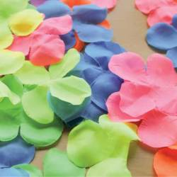 Flower Color Sorting Activities Early Learning Ideas