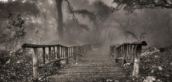 eerie-stairs.png