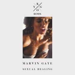 Kygo Sexual healing Album Art