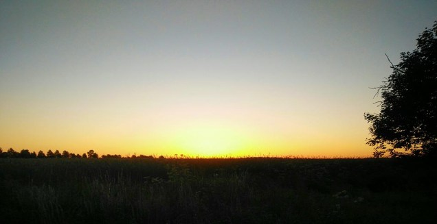 Mammutmarsch sonnenuntergang