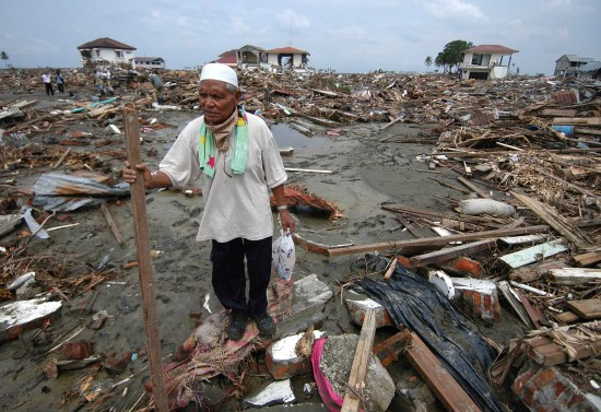 left behind by last week's massive tsunami in the town of Banda Aceh