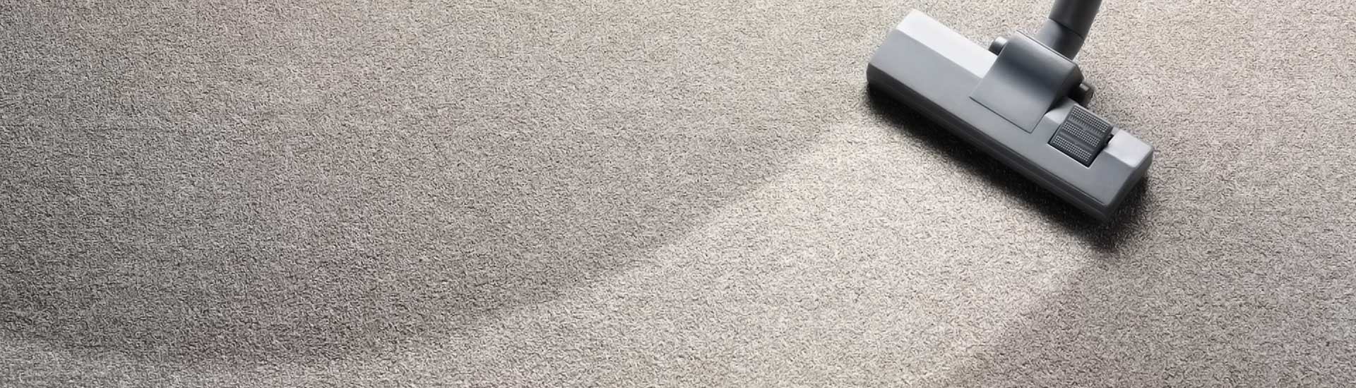 Carpet Cleaning Carpet Rug Upholstery Cleaning Company In New Bern Nc