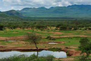 tsavo_west_national_park_kenya_safari_vacation