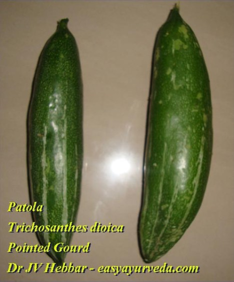 Pointed gourd fruit