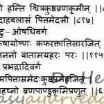 Tinisha – Ogeinia dalbergioides Uses, Dose, Research
