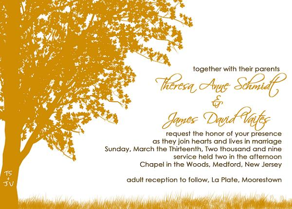 Wedding Invitation Wording Samples What to Write in Wedding - get together invitation template