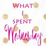 What I Spent Wednesday
