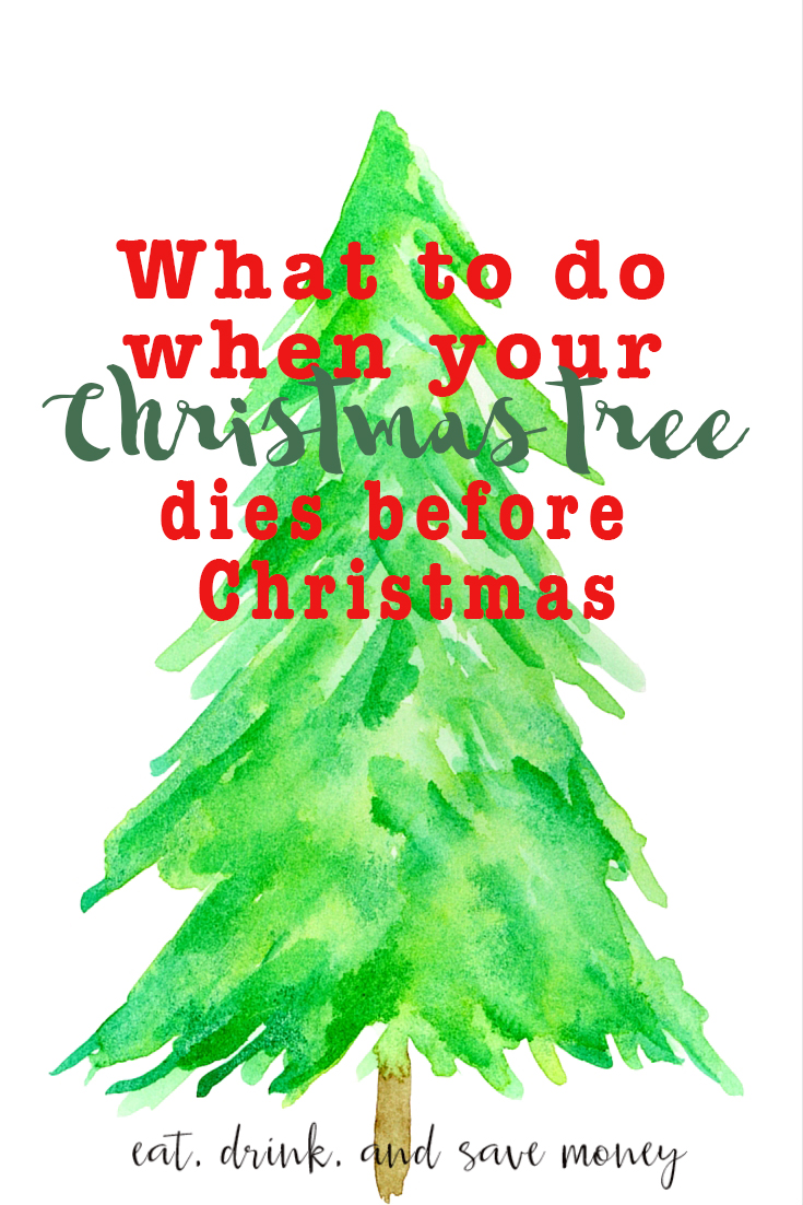What to do when your christmas tree dies before christmas for How did the christmas tree come about