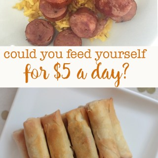 The food desert challenge is really hard! could you feed yourself off of $5 a day