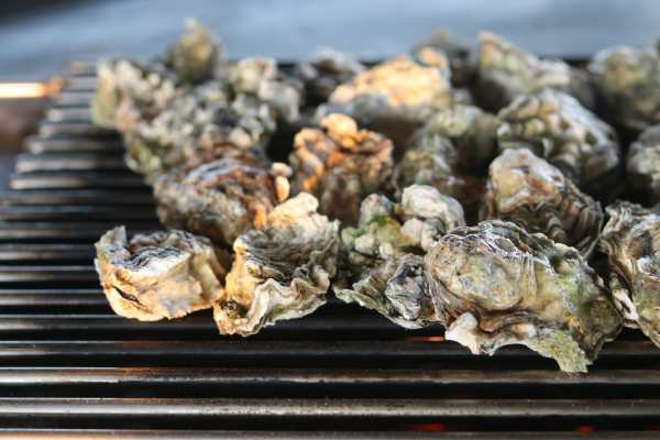 Grilling oysters