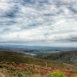 The view from the flower safari at Grootbos in Overberg