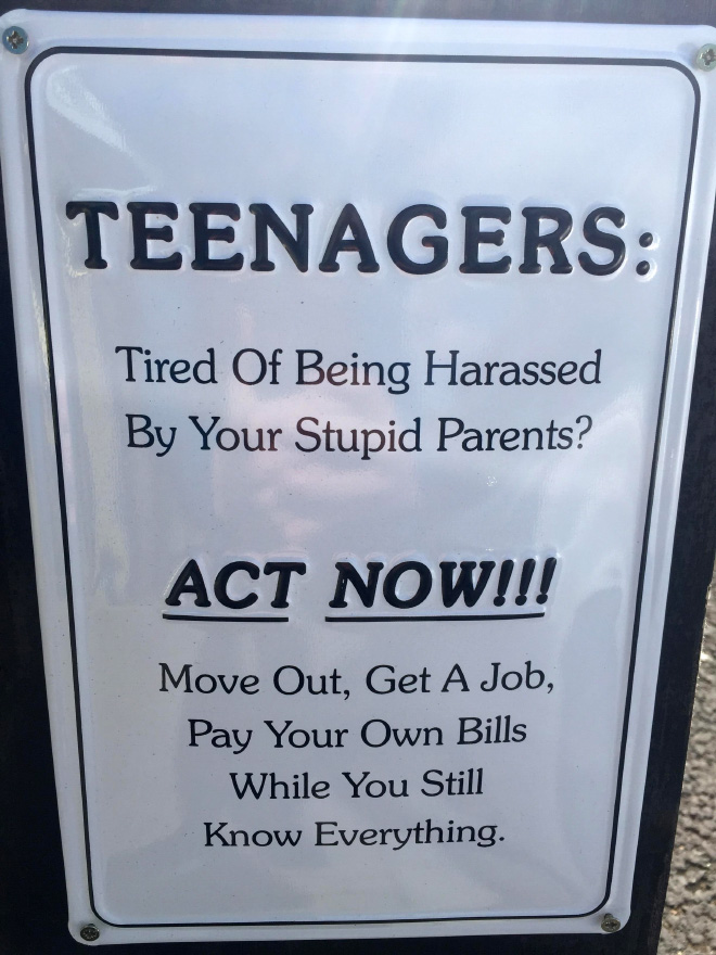 Teenagers! Are You Tired Being Harassed by Your Stupid Parents?