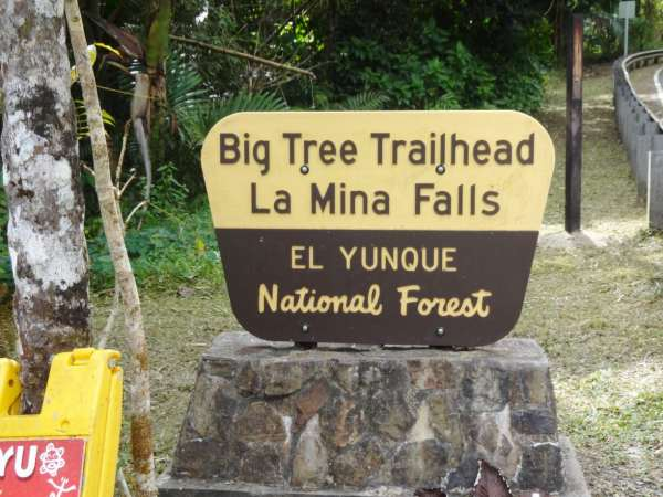 El Yunque National Rainforest