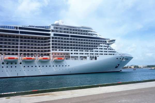 Take an MSC Divina Cruise