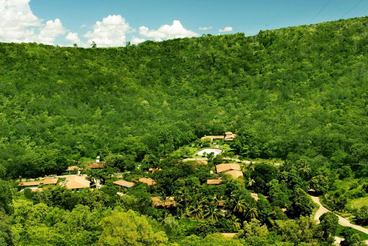 Photographie de l'Instituto Terra : Fazenda Bulcao en 2012