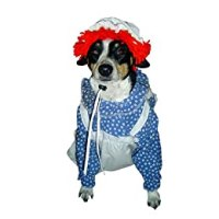 Dog Halloween Costume | i love WEREWOLVES