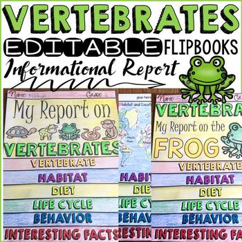 animal report vertebrates informational reports research templates