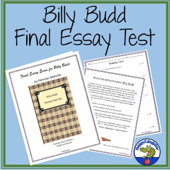 Billy Budd Final Test - Essay Examination by HappyEdugator TpT