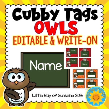 Owl Cubby Tags Worksheets  Teaching Resources TpT