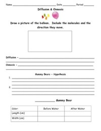 Diffusion Worksheets - Kidz Activities