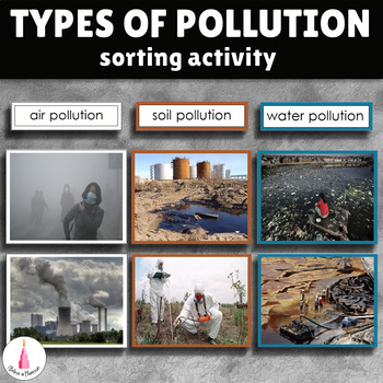 Types of Environmental Pollution Sorting Activity by I Believe in