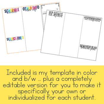 Editable IEP at a Glance Brochure - IEP Snapshot Brochure by Mrs Ds